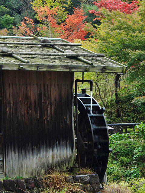 higashiyama-10 [640x480].JPG