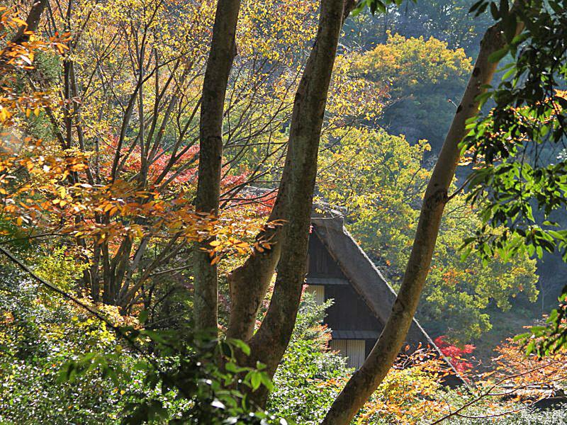 higashiyama-23 [800x600].jpg