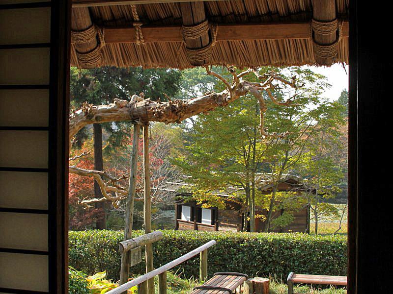 higashiyama-3 [800x600].jpg